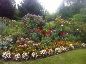 Massifs de fleurs